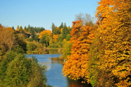 Tumwater, WA Real Estate Overview   Van Dorm Realty, Inc